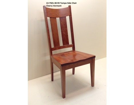 Tampa Side Chair 13-7501-30-93 Image